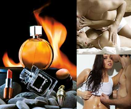 Pheromones,Do Pheromones,Pheromones Really Work,Effects Of Pheromones,Pheromone,Human Pheromones,Pheromone Product,Human Pheromone,Pheromones Women
